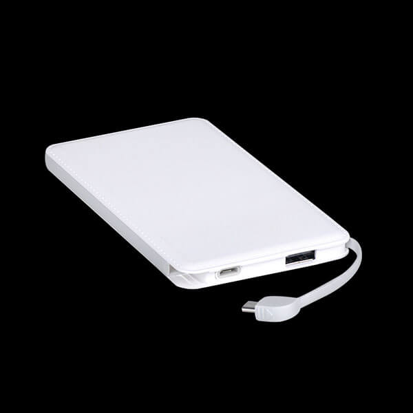 power bank manufacturers in china port show